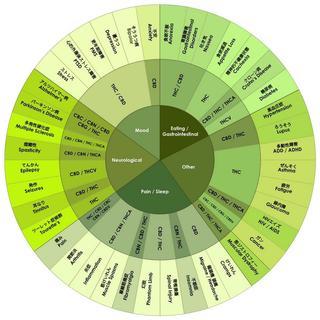 cannabis 一覧表.jpg